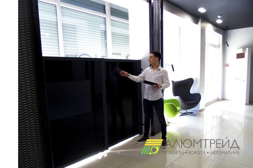 ворота из стекла купить в днепропетровске